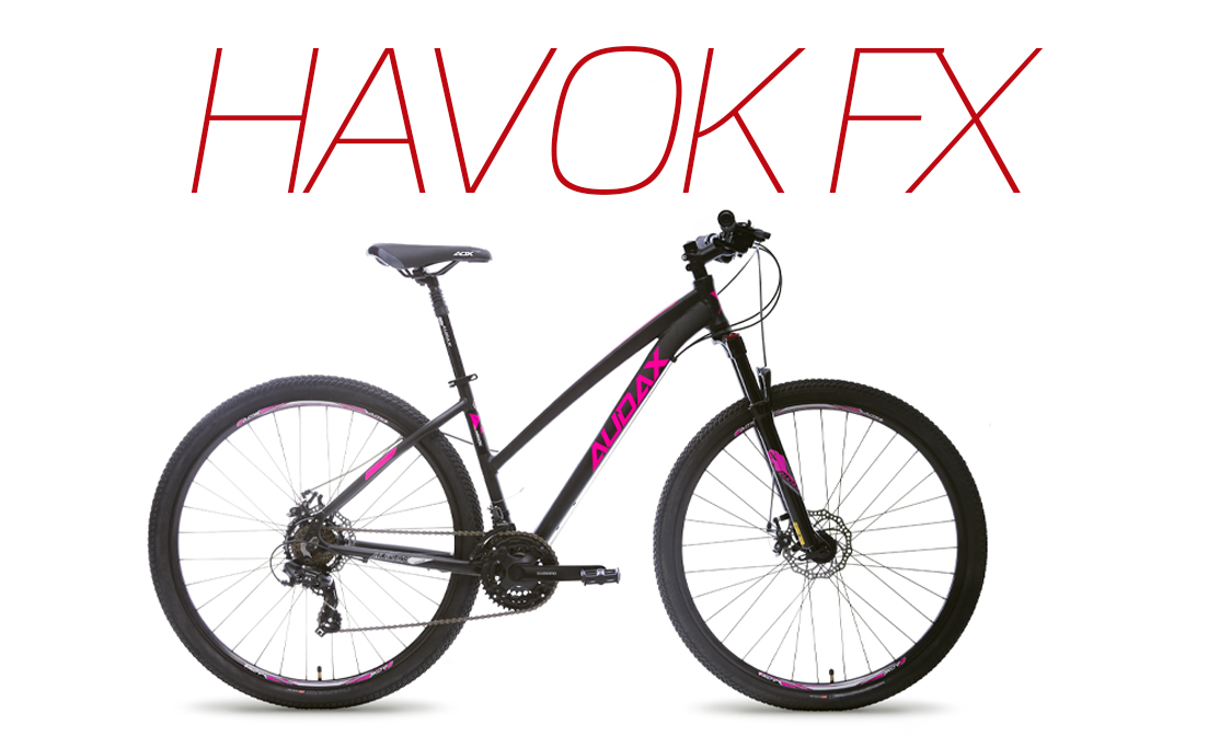 HAVOK FX <small> usai </small>